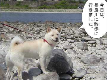 長良川-1コマ