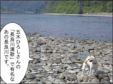 長良川-2コマ