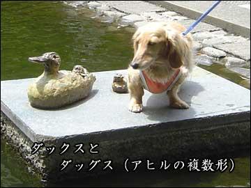 池のオブジェ-4コマ