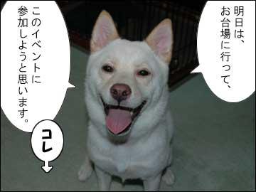 予告:DogFesta に行きます-1コマ