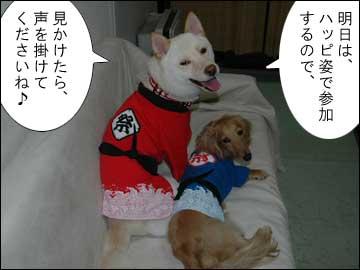 予告:DogFesta に行きます-5コマ