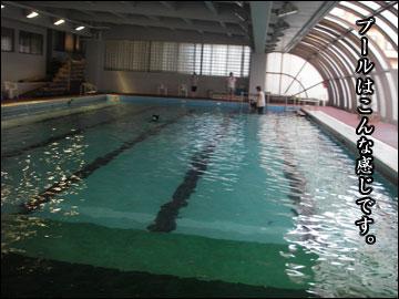プールで水泳-2コマ