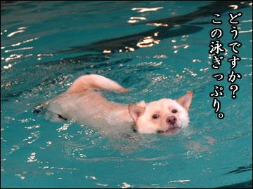 プールで水泳-4コマ