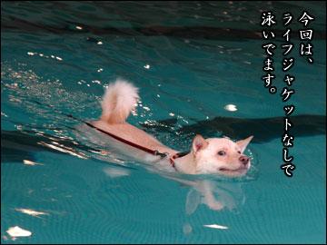 プールで水泳-5コマ