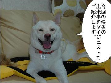お盆帰省ダイジェスト-1コマ