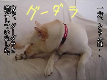 夏休みの思ひ出(とろろ偏)-6コマ