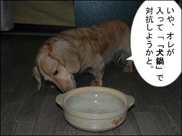 猫鍋・犬鍋-3コマ
