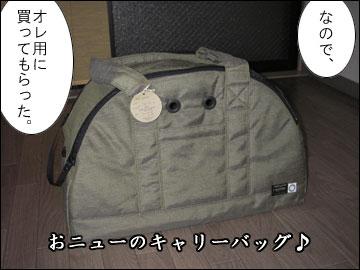 オレ専用バッグ-2コマ