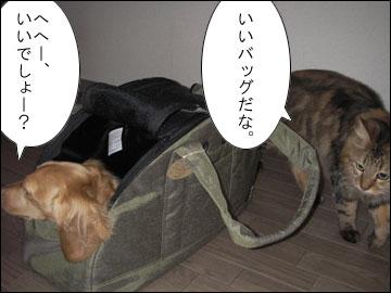 オレ専用バッグ-5コマ