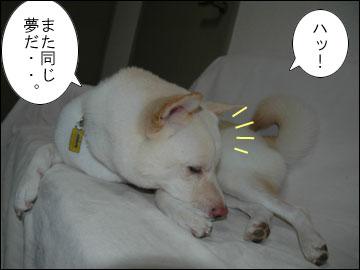 正夢-5コマ