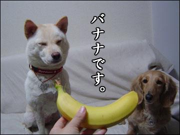 そんなバナナ-1コマ