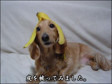 そんなバナナ-5コマ