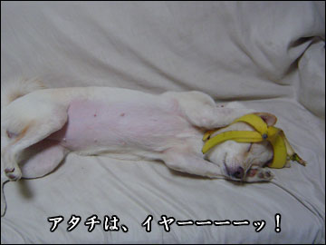 そんなバナナ-7コマ