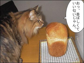 パンを焼いてみました-5コマ