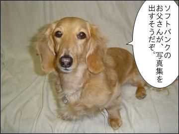 元祖おしゃべり犬-1コマ