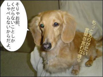 元祖おしゃべり犬-6コマ