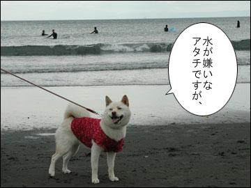 湘南の海-2コマ