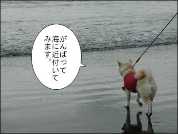 湘南の海-3コマ