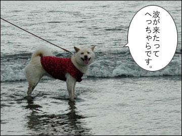 湘南の海-4コマ