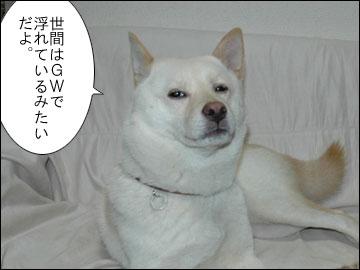 GW突入-1コマ