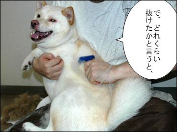 脱毛処理-4コマ