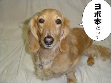 ヨボボン-5コマ