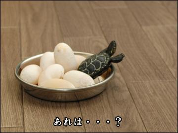 卵、かえる?-4コマ