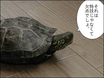 マリ男の特技-6コマ