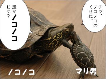 マリ男の特技-7コマ