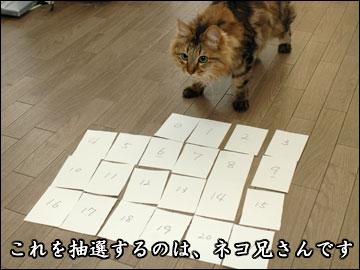 書籍化記念プレゼント抽選会-4コマ