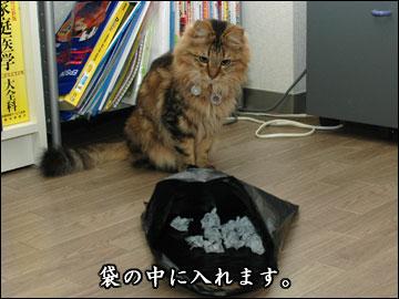 書籍化記念プレゼント抽選会-6コマ