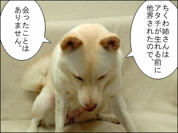 「ちくわ」の秘密-3コマ