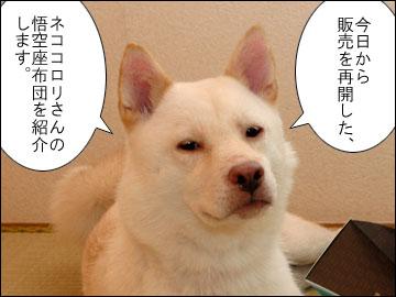 悟空座布団-1コマ