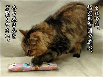 悟空座布団-3コマ