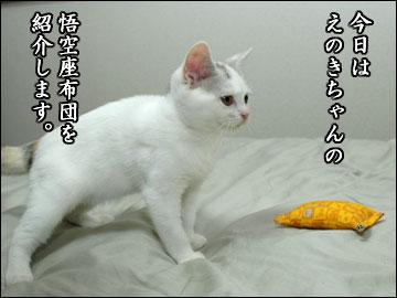 えのき用、悟空座布団-1コマ