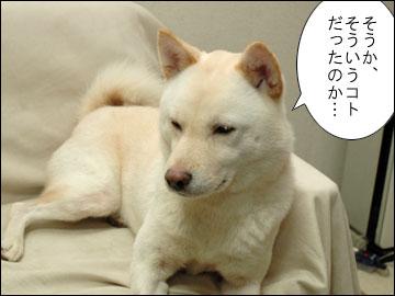 邪魔するワケ-1コマ