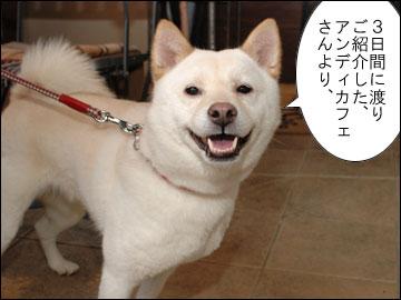 厚揚げ読者様限定、AndyCafe割引サービス!-1コマ
