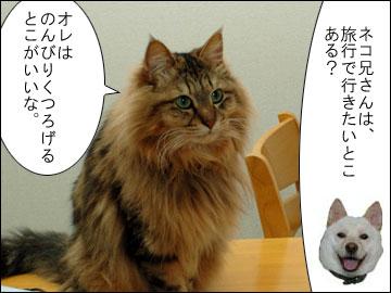 【募集】オススメ旅行スポット-3コマ