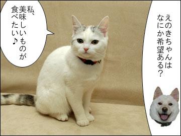 【募集】オススメ旅行スポット-4コマ