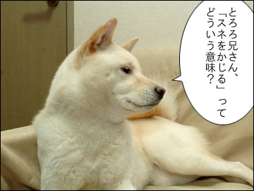 スネかじり-1コマ