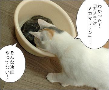 「まりりん」の由来-5コマ
