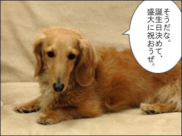 まりりんの誕生日-4コマ