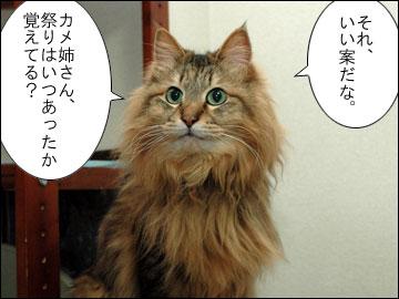 まりりんの誕生日-6コマ
