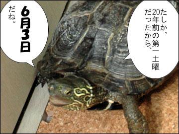 まりりんの誕生日-8コマ