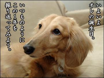 振り返り(2009年版)-1コマ