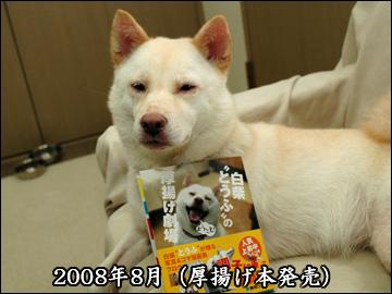 振り返り(2009年版)-2コマ