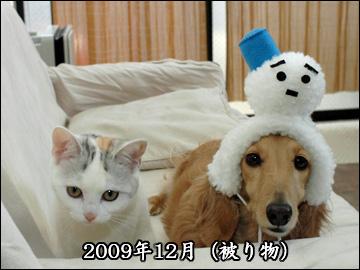 振り返り(2009年版)-6コマ