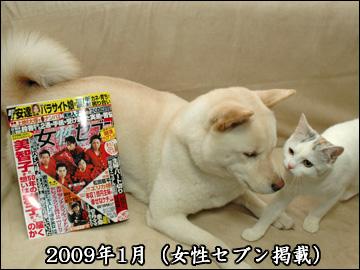 振り返り(2009年版)-7コマ