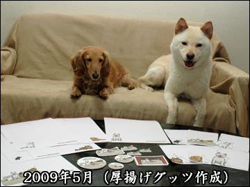 振り返り(2009年版)-9コマ