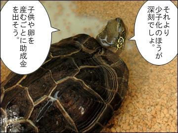 厚揚げ党のマニフェスト-3コマ